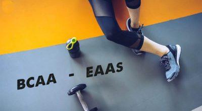 Sự khác nhau giữa BCAA và EAA