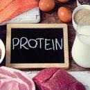 Tác dụng của Protein